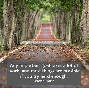 Any important goal takes a lot of work, and most things are possible if you try hard enough.