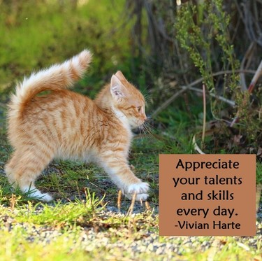 Appreciate your talents and skills every day.