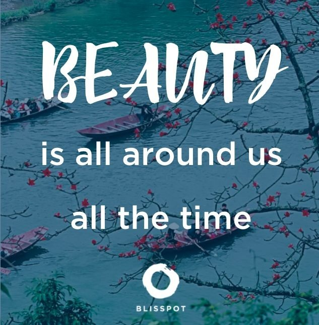 Beauty is all around us all the time.