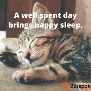 A Happy Sleep