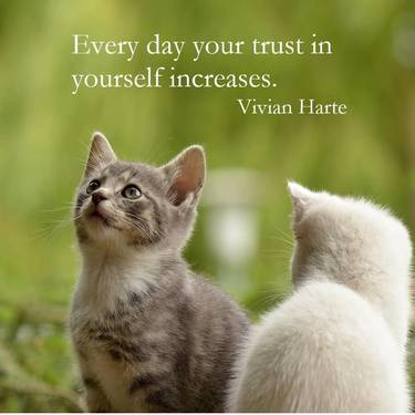 Every day your trust in yourself increases.