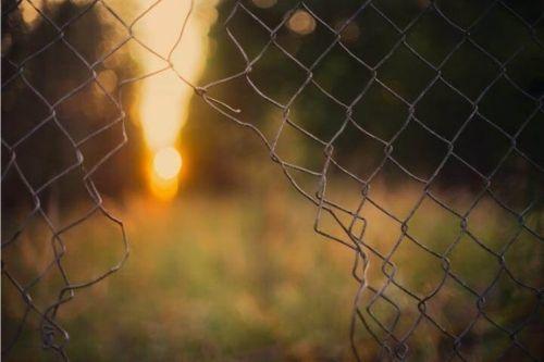 fence, hole, sun
