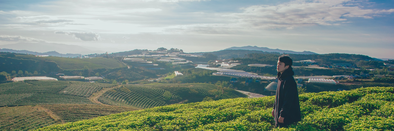 Learning to Grow from Your Mistakes