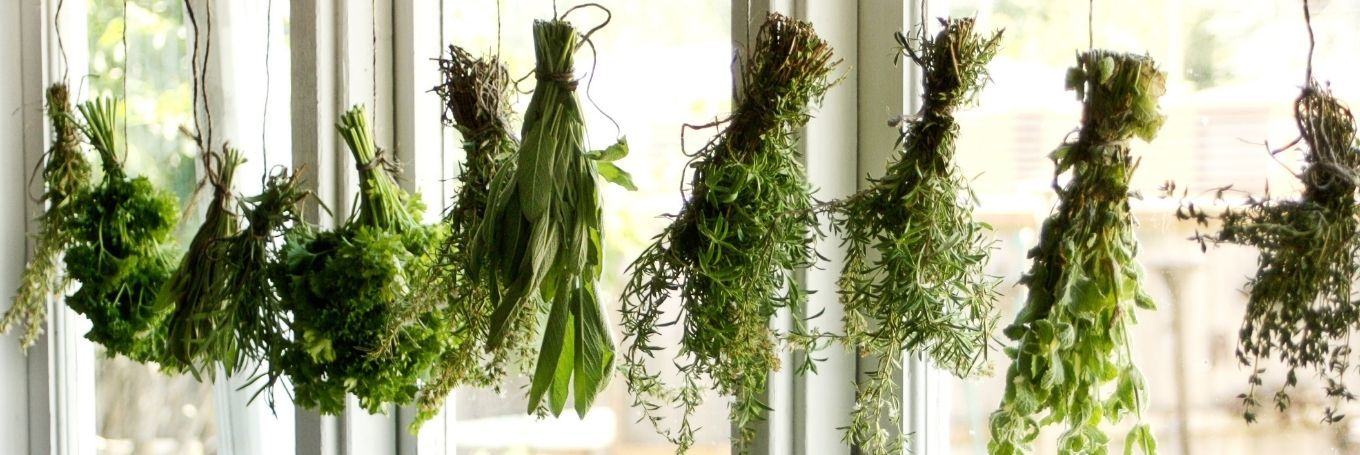 The Incredible Benefits of Herbs